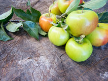 Bunch of apples on a log Royalty Free Stock Photo