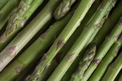 Bunch of asparagus on dark table. Organic, vegetarian and healthy food concept. Closeup. Copy space. Top view Royalty Free Stock Photography