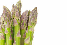 Bunch of asparagus tips closeup, on white Royalty Free Stock Photography