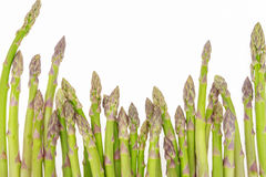 Bunch of asparagus tips on white background Royalty Free Stock Images