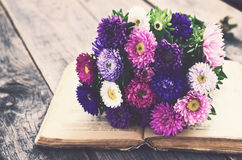 Bunch of autumn asters upon open book, vintage effect Stock Images