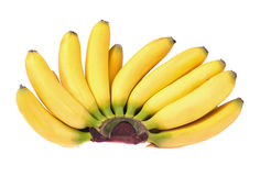 Bunch of Baby Bananas Stock Photos