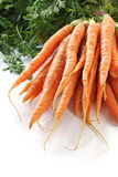 Bunch of Baby Carrots Royalty Free Stock Images