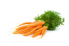 Bunch of Baby Carrots over white Stock Photo