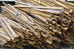 Bunch of Bamboo Royalty Free Stock Photography