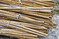 Bunch of Bamboo Stock Photography