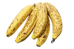 Bunch of Banana Stock Photo
