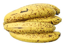Bunch of Banana Royalty Free Stock Photos