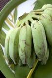 Bunch of banana Stock Image