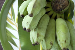 Bunch of banana tropical fruit Royalty Free Stock Images