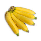 Bunch of banana. On white background Royalty Free Stock Photo