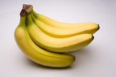 Bunch of bananas. Bunch of fairtrade bananas on a  studio background Royalty Free Stock Photo
