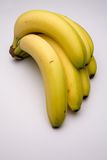Bunch of bananas. Bunch of fair-trade bananas on a studio background Stock Images