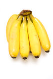 Bunch of bananas. A bunch of ripe yellow bananas isolated on white studio background Royalty Free Stock Photos