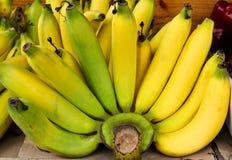 Bunch of bananas. Bunch of bananas fruits , Thailand stock image