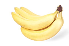 Bunch of bananas. Isolated on white Royalty Free Stock Images