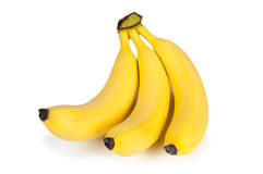 Bunch of bananas. On white background Royalty Free Stock Photo
