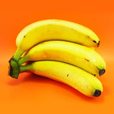 Bunch of Bananas. On a bright orange background Royalty Free Stock Photo
