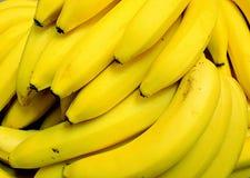 Bunch of Bananas. Yellow skin Royalty Free Stock Photo
