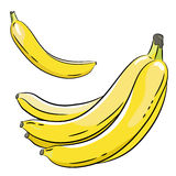 Bunch of bananas and a banana. Image of bananas on a white background stock illustration