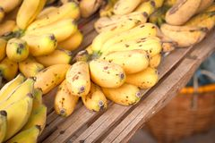 Bunch of  bananas fruit. Bunch of  bananas fruit in Thailand market for sale Stock Photography