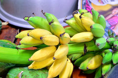 Bunch of bananas. Royalty Free Stock Images