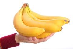 Bunch bananas isolated on white background. Yellow bunch bananas in woman hand isolated on white background Stock Images