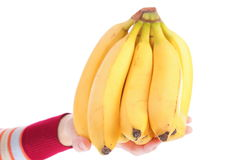 Bunch bananas isolated on white background Royalty Free Stock Images