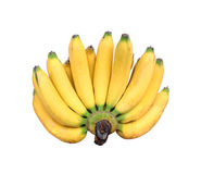 Bunch of bananas isolated on white background.  Royalty Free Stock Images