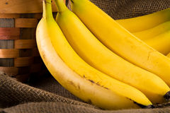 A bunch of bananas. Leaning on a basket with burlap for a background Stock Photography