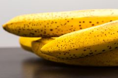 Bunch of bananas lying on dark wooden table Stock Photo