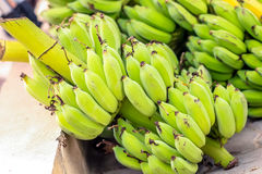 Bunch of bananas at the market for sell Royalty Free Stock Photos