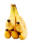 Bunch of bananas (path included) Royalty Free Stock Image