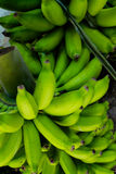 Bunch Bananas Royalty Free Stock Image