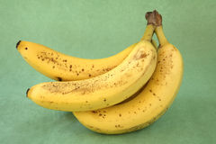Bunch of bananas from side. Stock Images