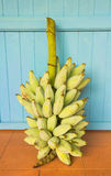 Bunch of bananas. Royalty Free Stock Photo