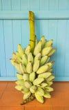 Bunch of bananas. Bunch of bananas on yellow wall Royalty Free Stock Photo
