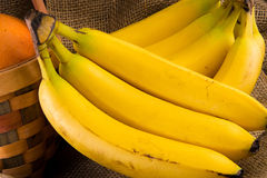 Bunch of Bannanas Royalty Free Stock Photography