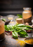 Bunch of basil on a background of herbs and spices for cooking Royalty Free Stock Image