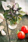 Bunch of basil Stock Photography