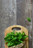 Bunch of basil in a paper bag.Copyspace background. Stock Images