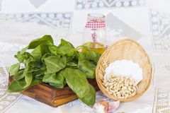 Bunch of basil with pine nuts on wooden tray. Bunch of basil on wooden stand and basket with pine nuts on white tablecloth, decorated olive oil jar and some stock images