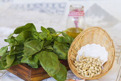 Bunch of basil with pine nuts on wooden tray. Bunch of basil on wooden stand and basket with pine nuts on white tablecloth, decorated olive oil jar and some royalty free stock images