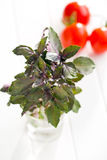 Bunch of basil and tomatoes Stock Photos