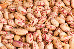 Bunch of beans arranged Royalty Free Stock Images