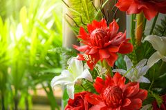 Bunch of beautiful flowers decoration include torch ginger and w. Hite lily with natural background Royalty Free Stock Photo