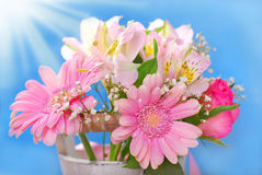 Bunch of beautiful pink flowers Stock Photos