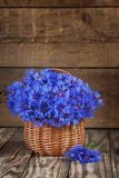 A bunch of beautiful summer flower of Cornflower in the basket. Royalty Free Stock Photo