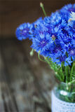 A bunch of beautiful summer flower of Cornflower. Royalty Free Stock Photography