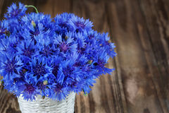 A bunch of beautiful summer flower of Cornflower in the white bu Stock Photos